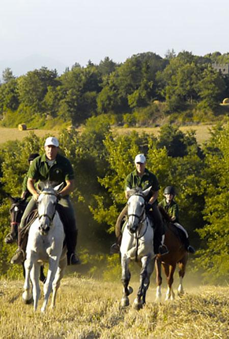 escursioni a cavallo val dorcia